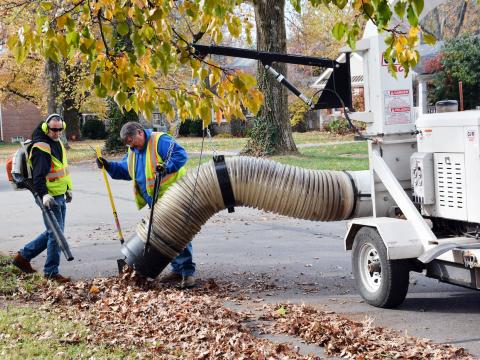 two men using a truck to vacuum up leaves on the street curb