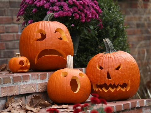 four carved pumpkins on a porch